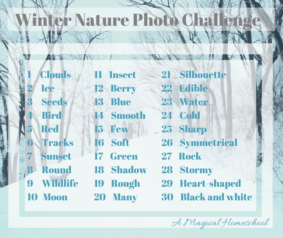 Winter nature photo challenge