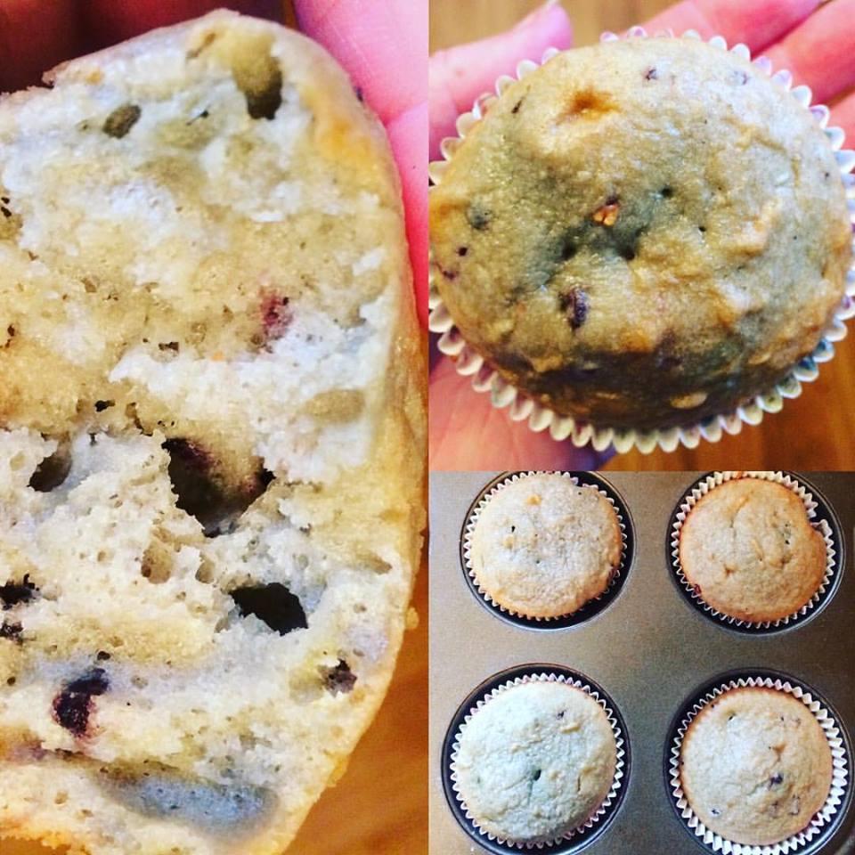 Elderberry cupcakes