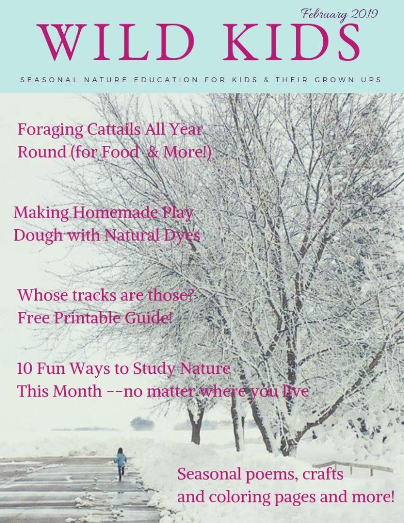 Wild Kids Magazine -- FREE printable nature magazine for kids and their families