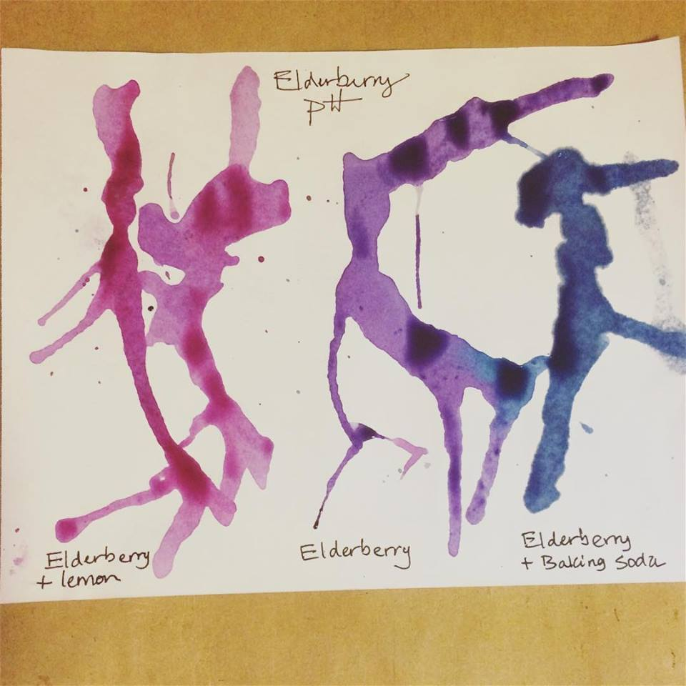 elderberry pH art and science