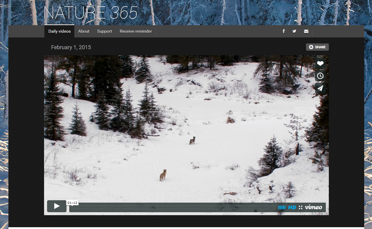 Renowned nature photographer launches wonderful new 365-day video project