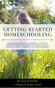Getting Started Homeschooling: Everything You Need to Know About Legal Requirements, Curricula, Testing, Types of Homeschooling, Learning Styles, Socialization and Making It Fun for Everyone