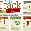 Print out free animal track ID cards!
