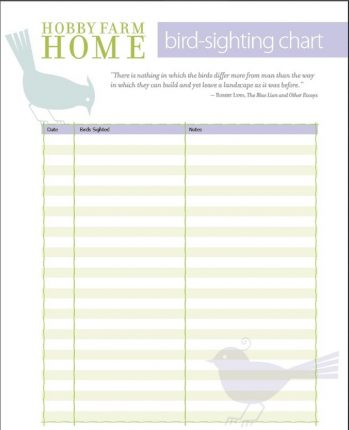 Free bird sighting log sheets!
