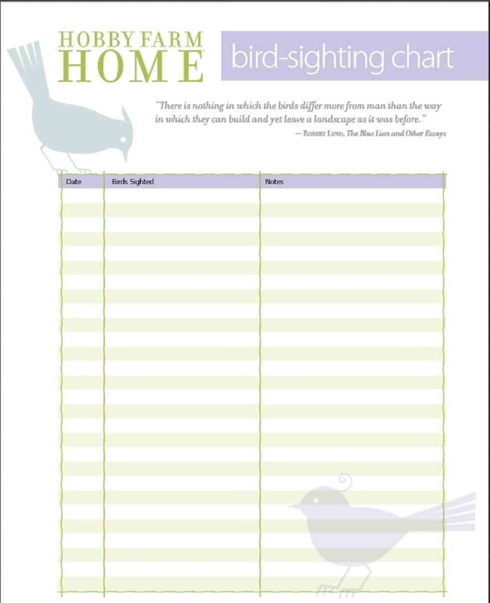 Free bird sighting log sheets!