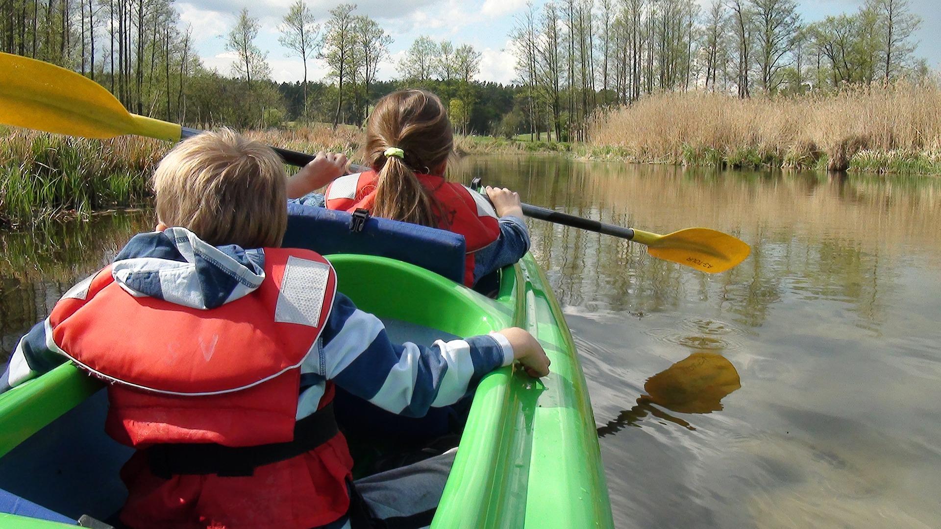 5 Fun Ways to Enjoy Nature Studies in June