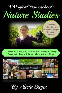 A Magical Homeschool: Nature Studies