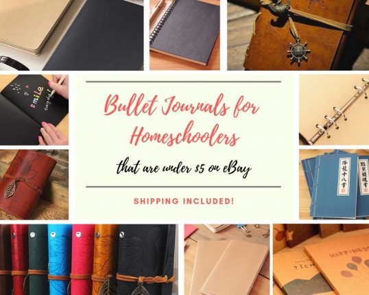 Bullet Journals for Homeschoolers that are under 5 dollars