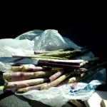 It's asparagus time!