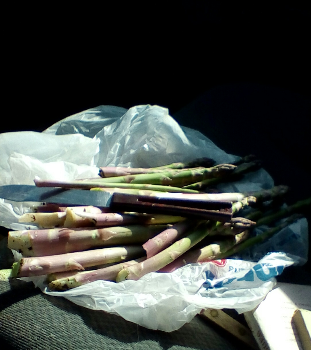 Fresh-cut asparagus (from a secret location)