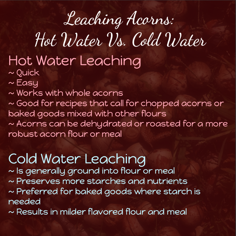 Benefits of hot water and cold water processing of acorns