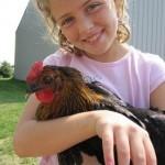 Seven benefits of backyard chickens