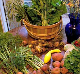Roots to Stems: How to use every part of your produce!