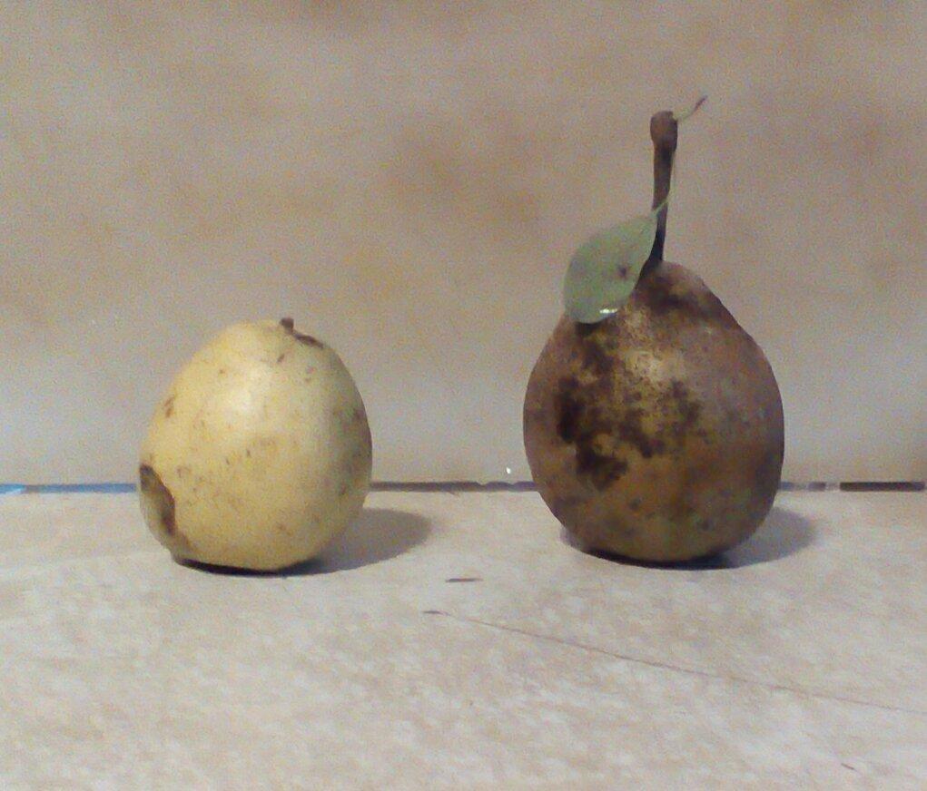 hospital-pears