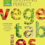 Square Foot Gardening: Growing Perfect Vegetables (Review)