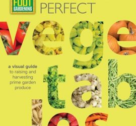 Review: Square Foot Gardening Growing Perfect Vegetables