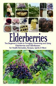 Elderberries: The Beginner's Guide to Foraging, Preserving and Using Elderberries for Health Remedies, Recipes, Drinks and More