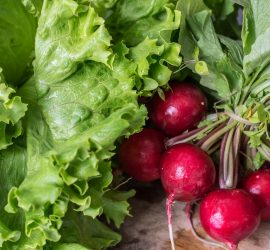 25 Garden crops to plant in August for your fall garden
