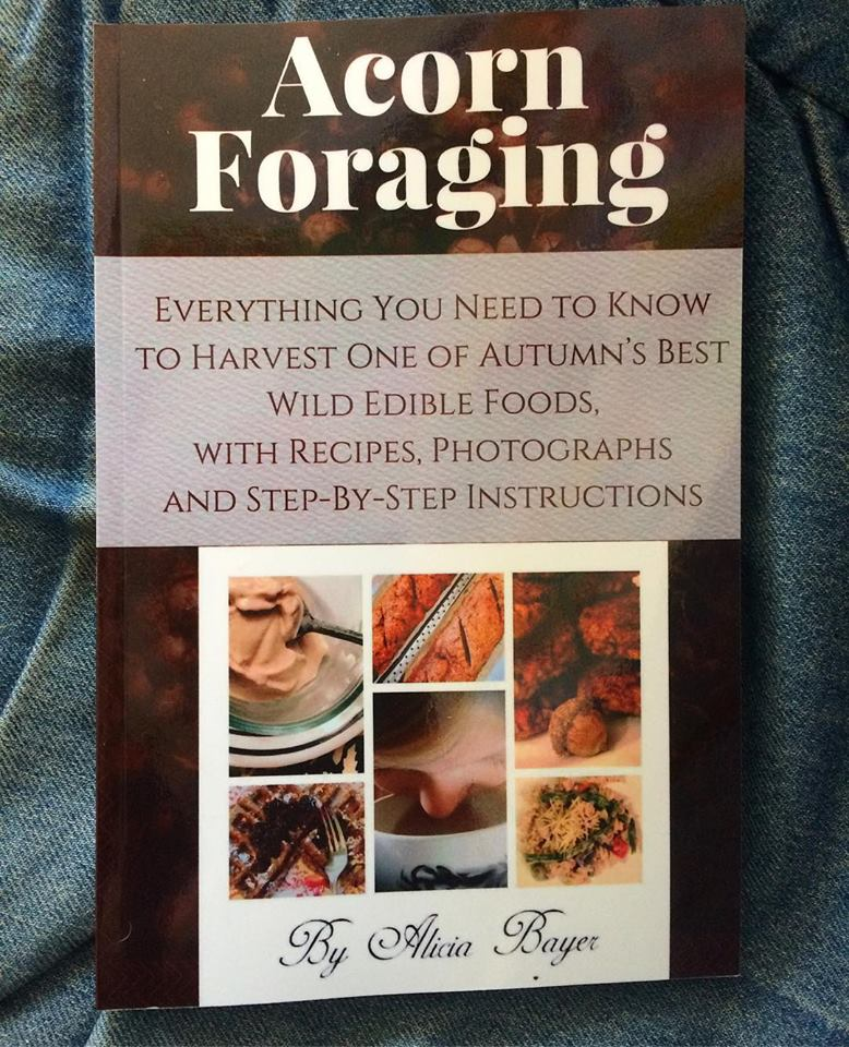 Acorn Foraging Book