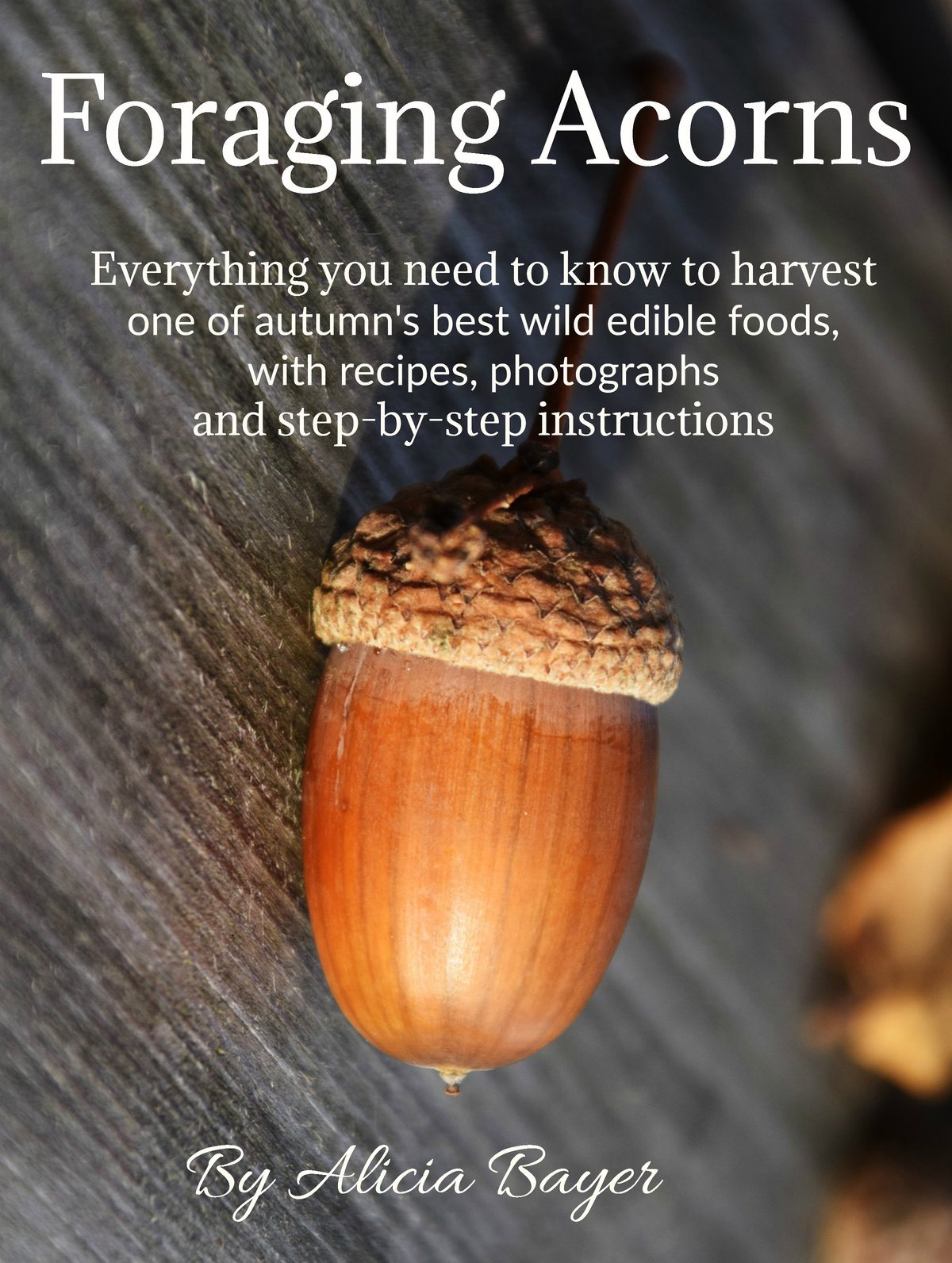 Coming soon to Kindle -- Foraging Acorns