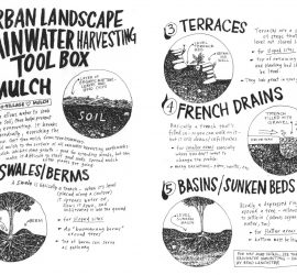 Fabulous free permaculture book teaches DIY urban rainwater harvesting