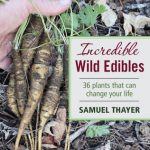 Which Wild Edible Plants Are Covered in Samuel Thayer's Foraging Books?