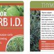 Free printable indoor herb ID cards