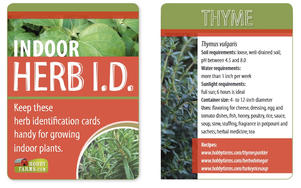 Free printable indoor herb ID cards