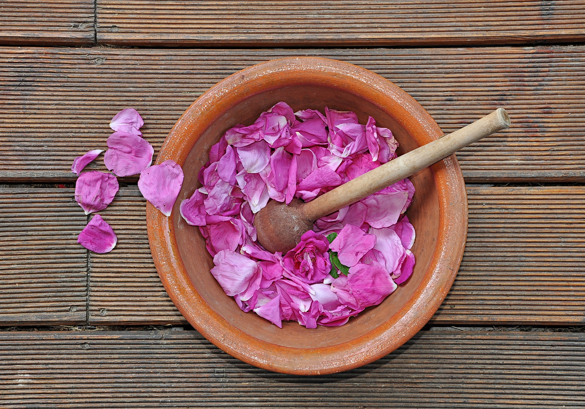 rose petals edible flowers