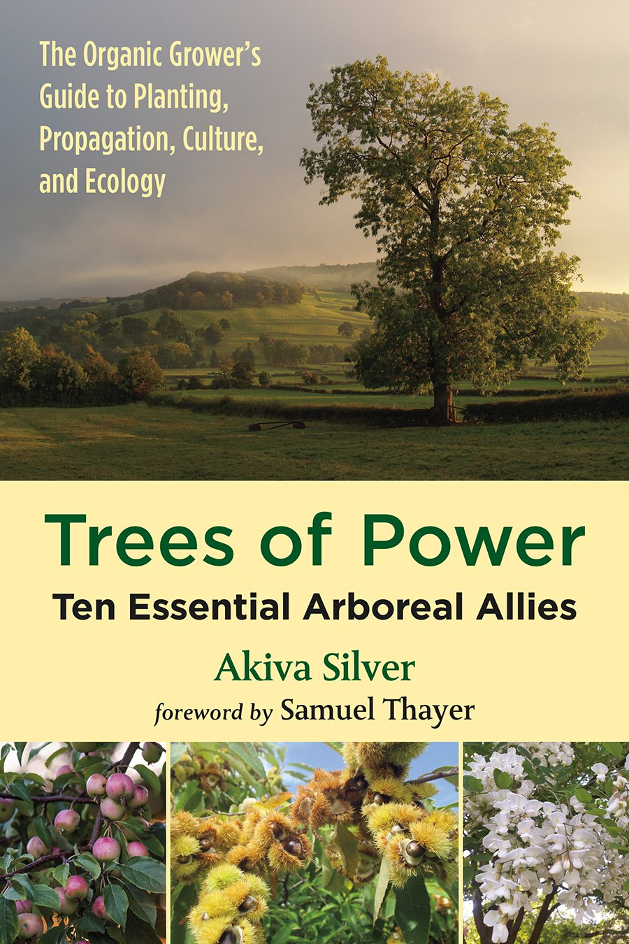 Trees of Power Review