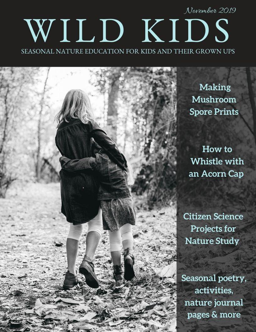 November Wild Kids Magazine
