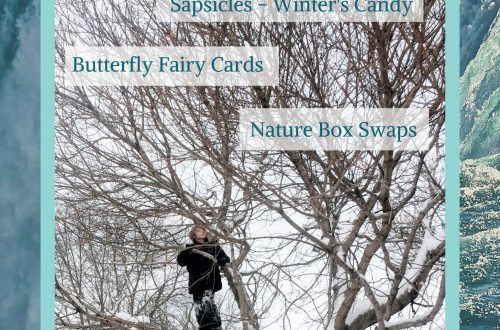 January 2020 Wild Kids Magazine