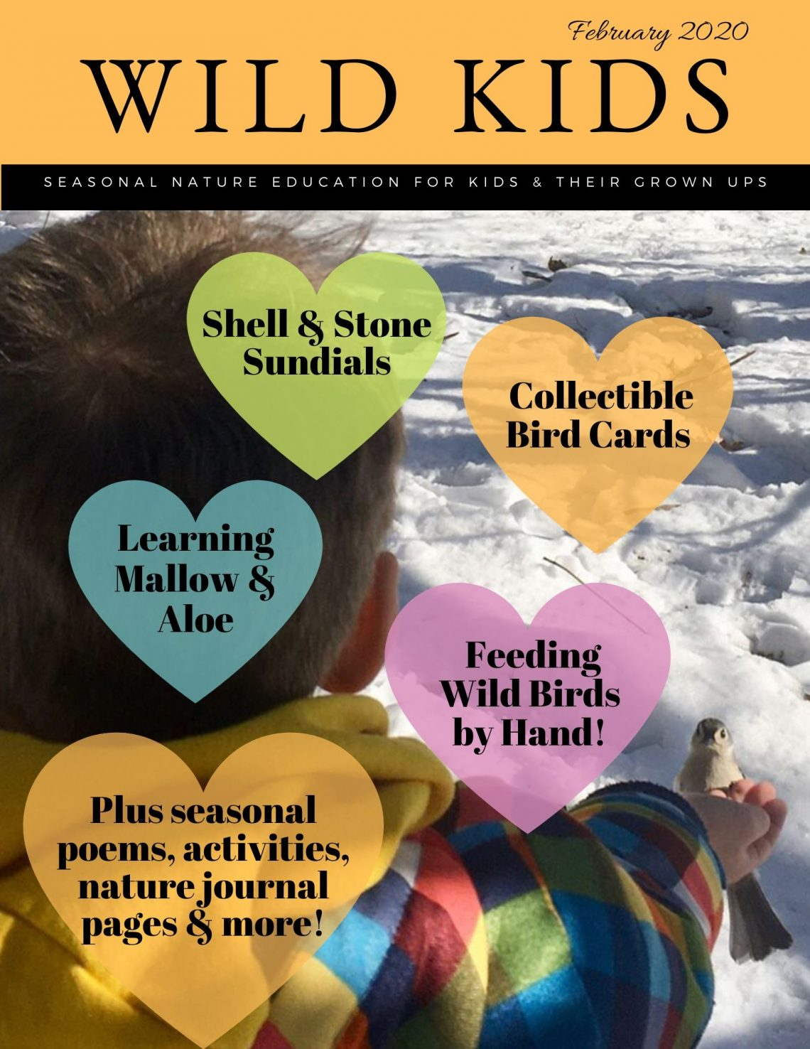 Feb 2020 Wild Kids Magazine