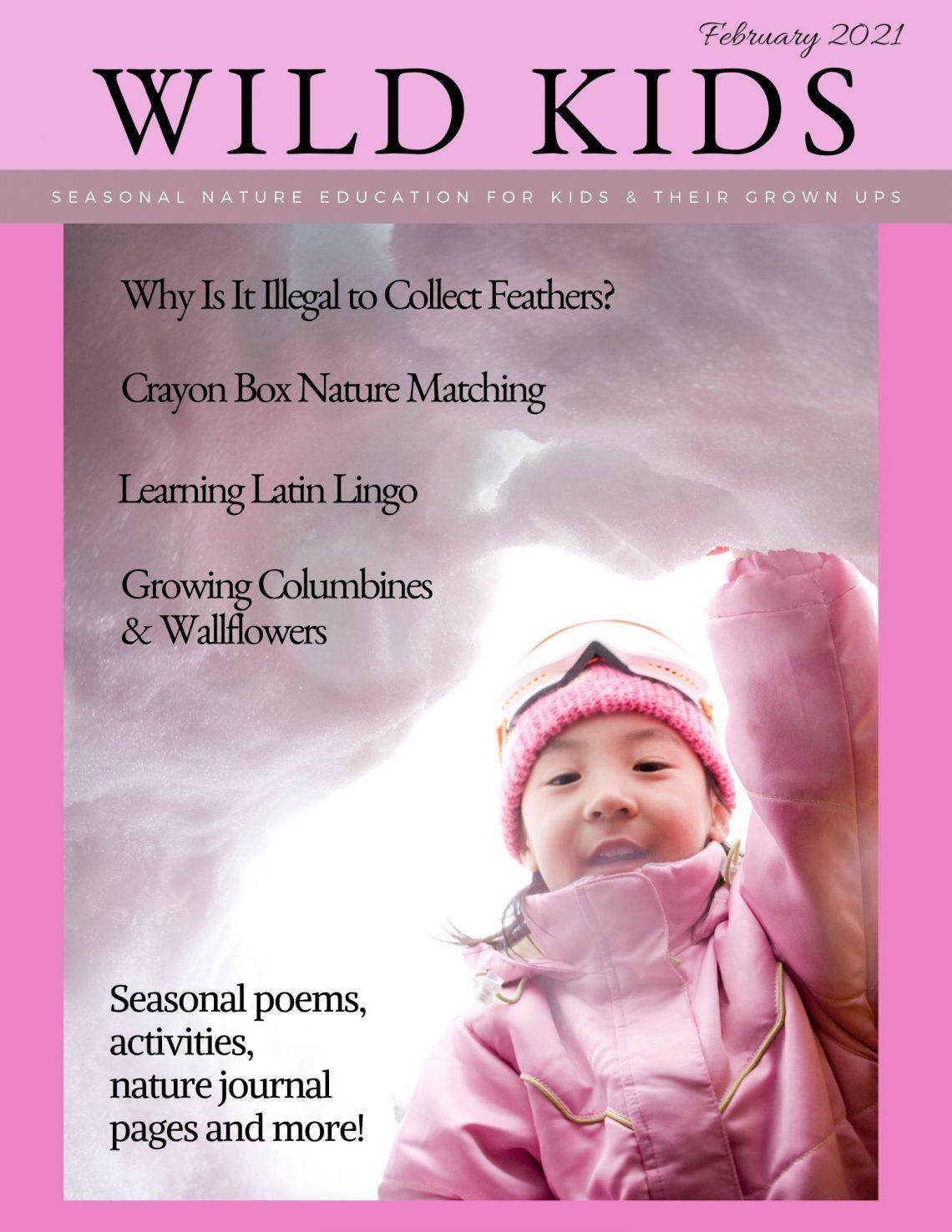 Feb 2021 Wild Kids Magazine