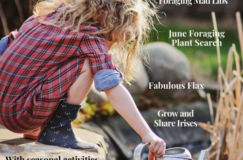 June 2021 Wild kids Magazine