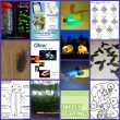 Learn and craft about fireflies!
