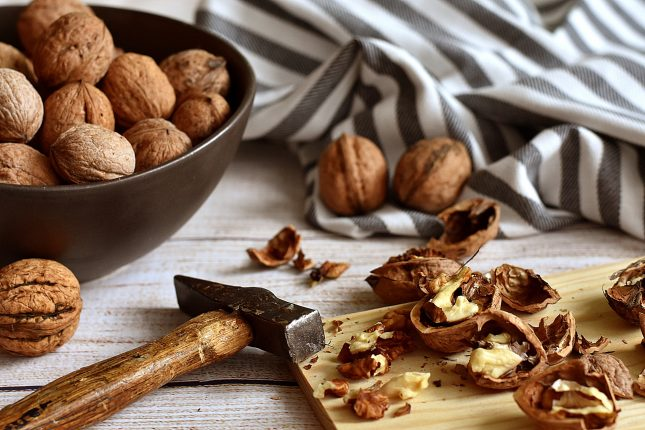 How to forage walnuts -- cracking the shells