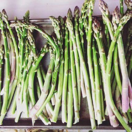 Foraged Wild Asparagus